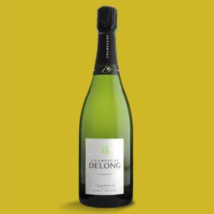 Esprit Nature Chardonnay – Champagne Delong Marlène