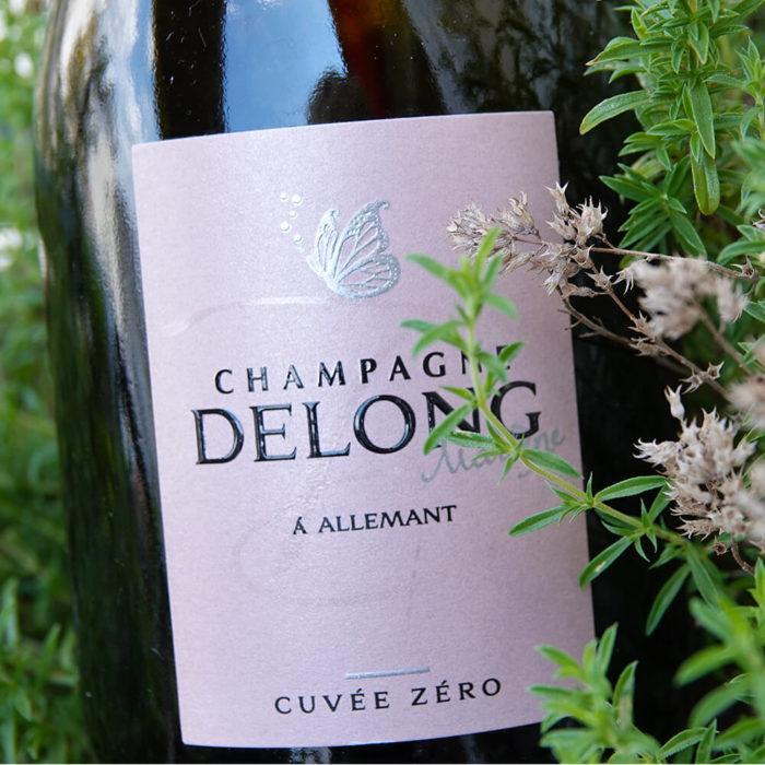 Dégustation champagnes d'été